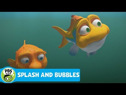 SPLASH AND BUBBLES | What is Brackish Water? | PBS KIDS